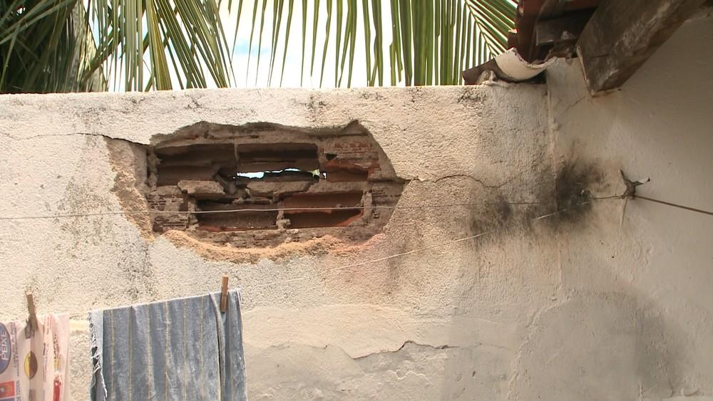 Coqueiro que também foi atingido por raio caiu e quebrou parte de parede na casa no Sertão da Paraíba — Foto: Beto Silva/TV Paraíba